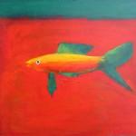 AttactiveFish